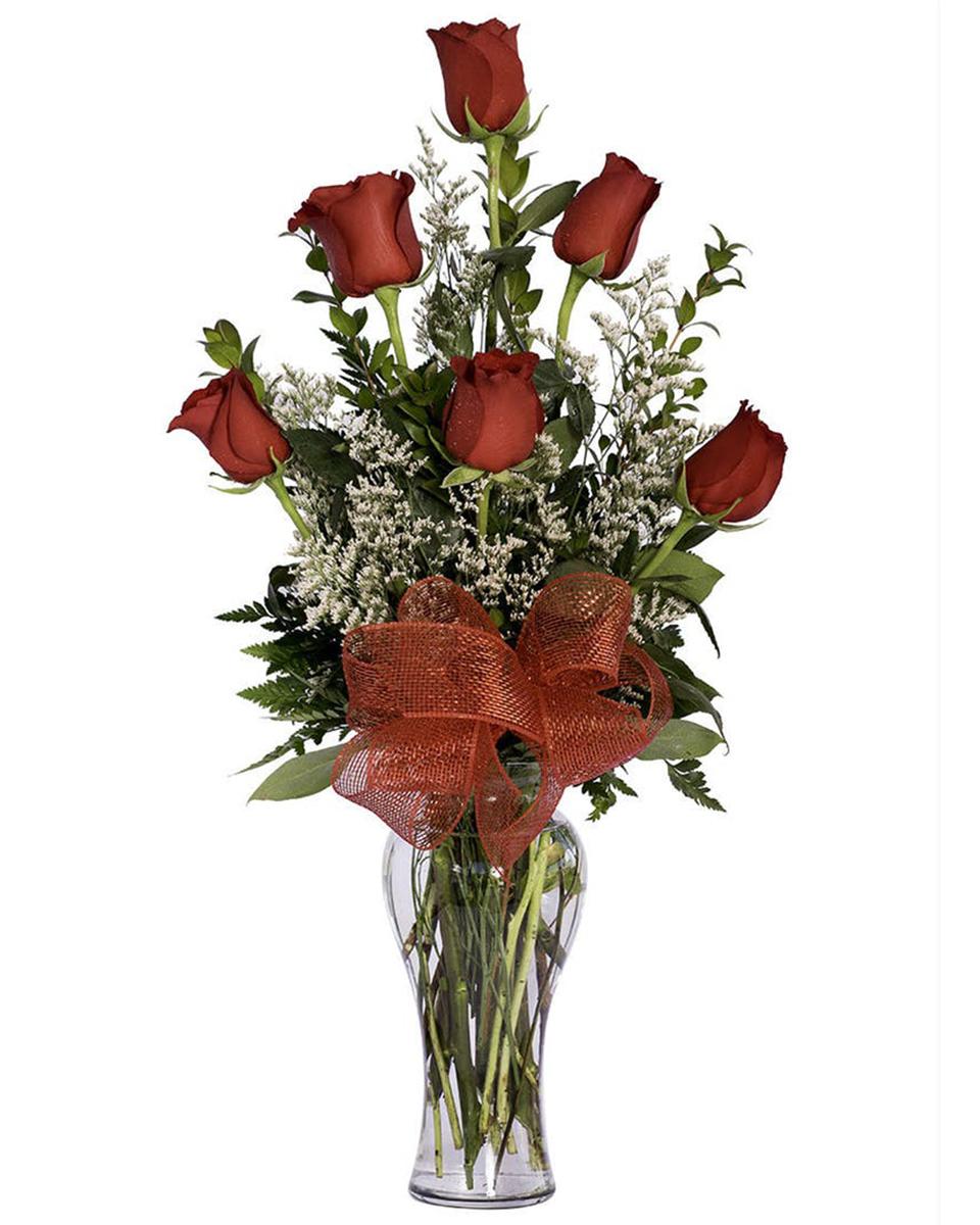 6 Red roses arranged in a vase