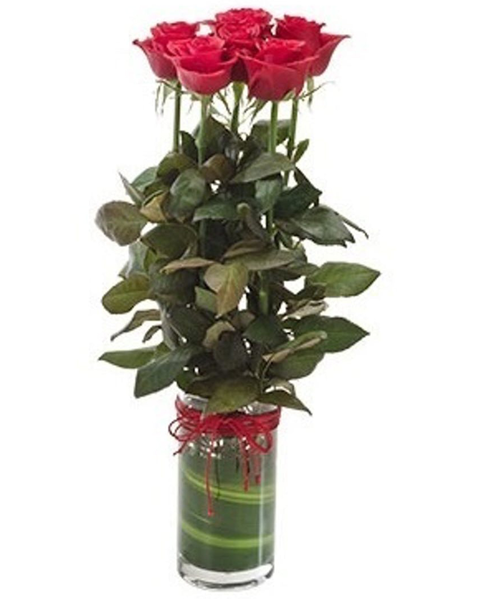 Rosebuds-Red
