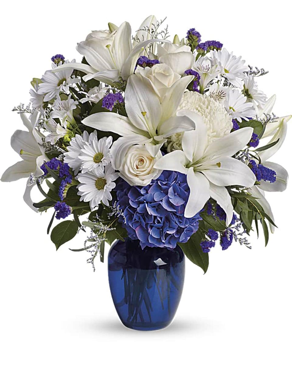 Beautiful in Blue - Premium