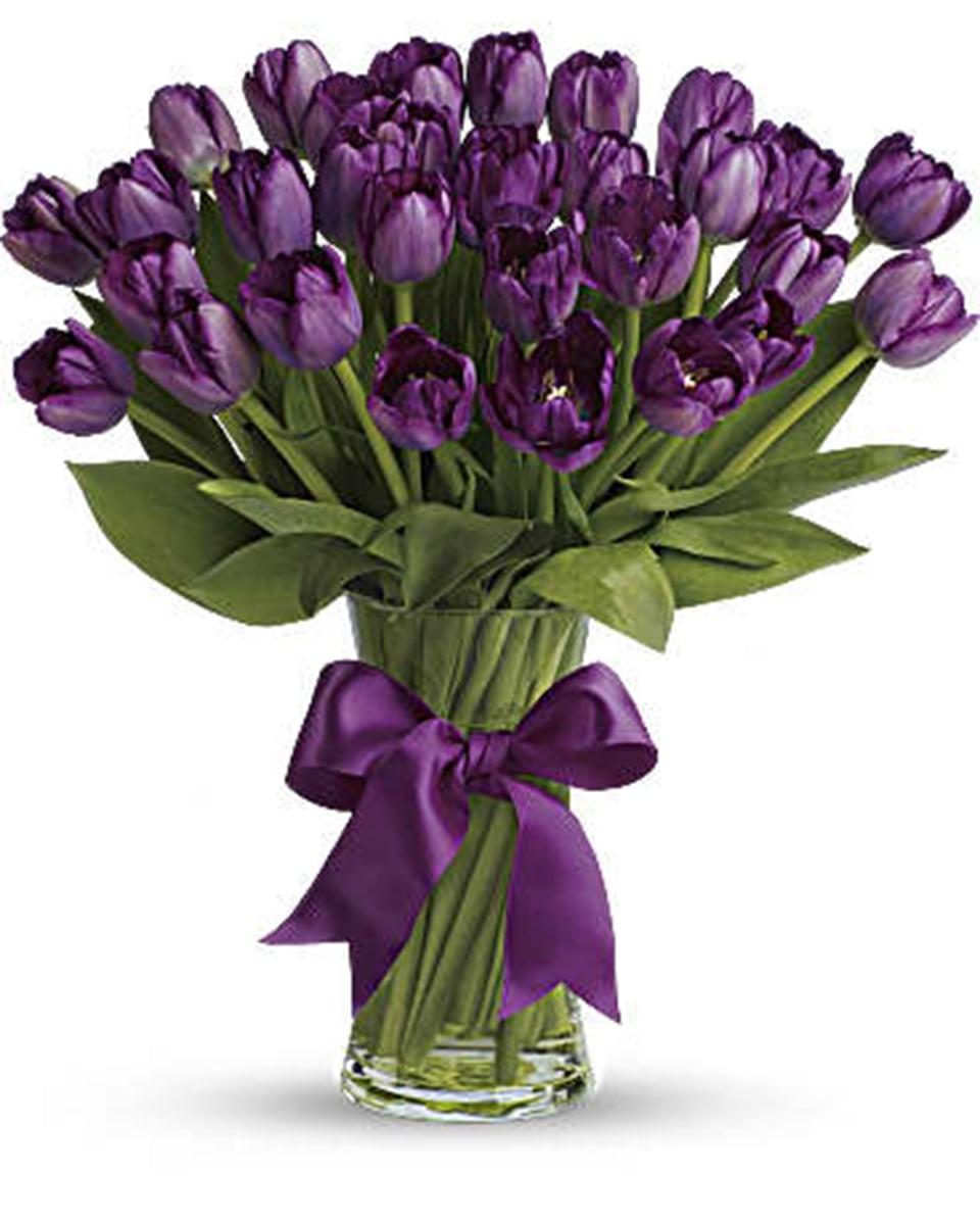 30 Tulips - Premium