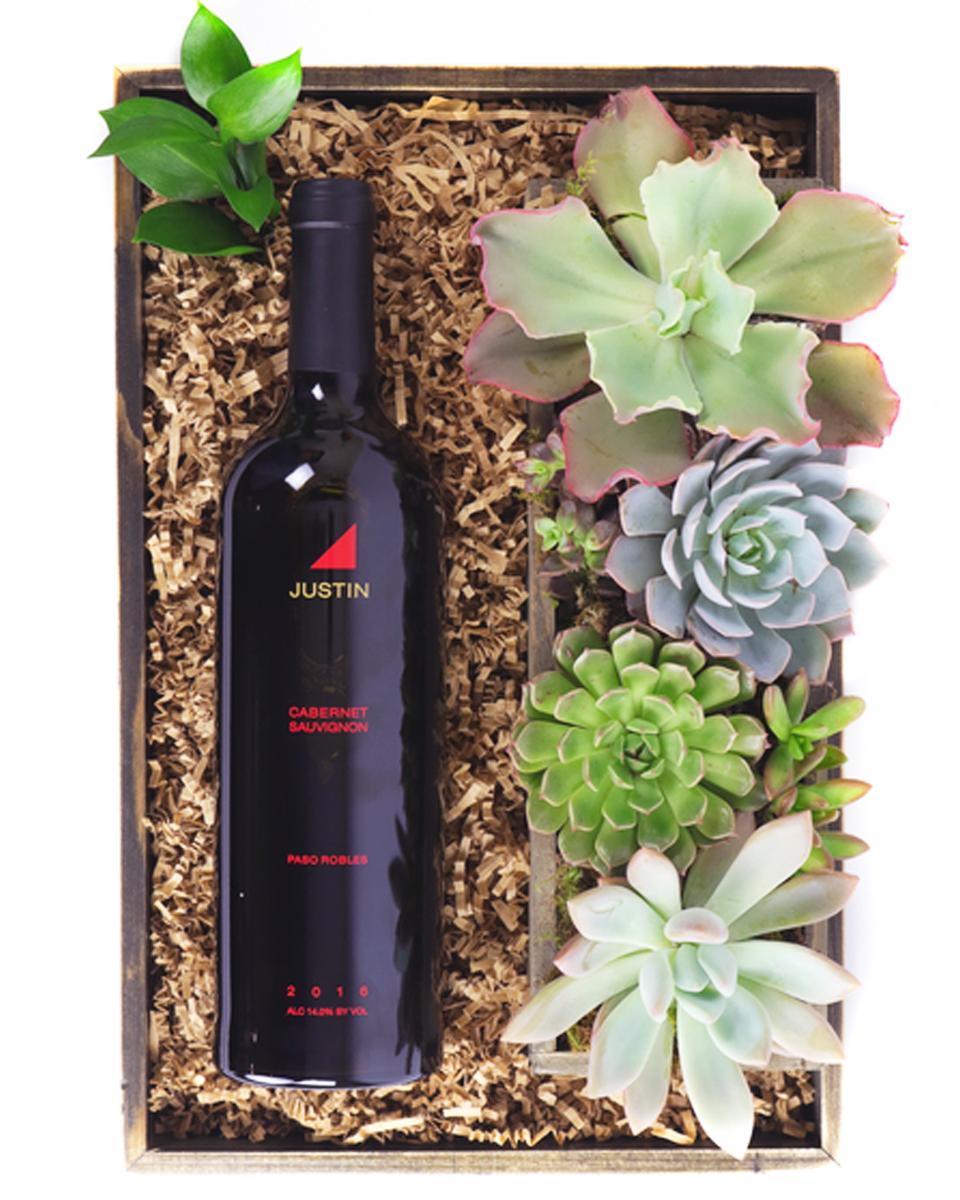 Justin Cabernet Sauvignon and Succulents