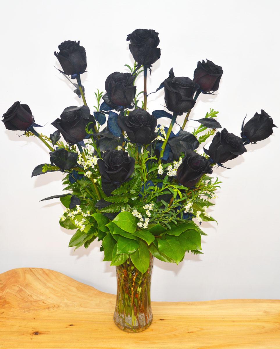 12 Black Magic Roses
