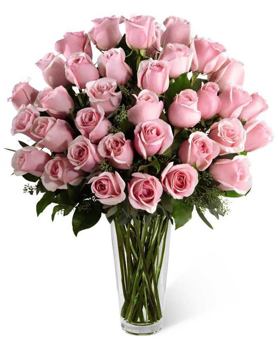 36 Pink Roses Arranged in a Vase
