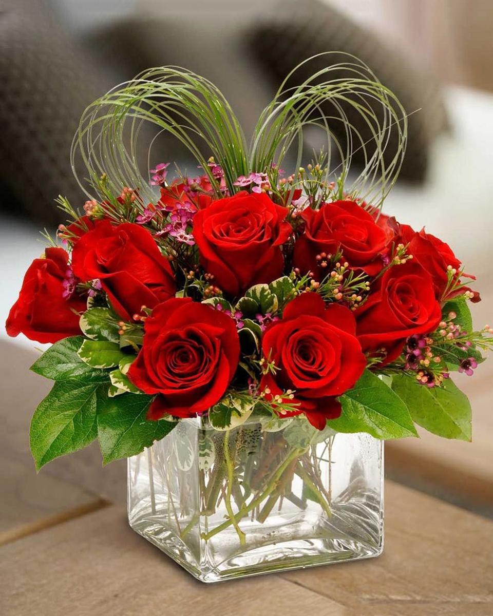 Love Squad-Standard (12 Roses)