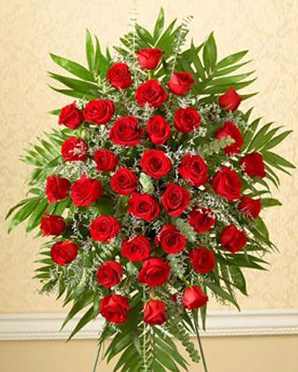 Standard-24 Red Roses