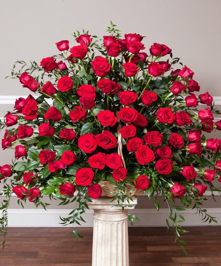 Deluxe (48 Roses)