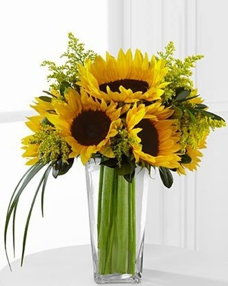Sexy Sunflowers-Standard (5 Sunflowers)