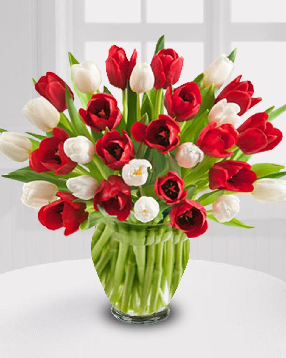 Premium (30 Tulips)