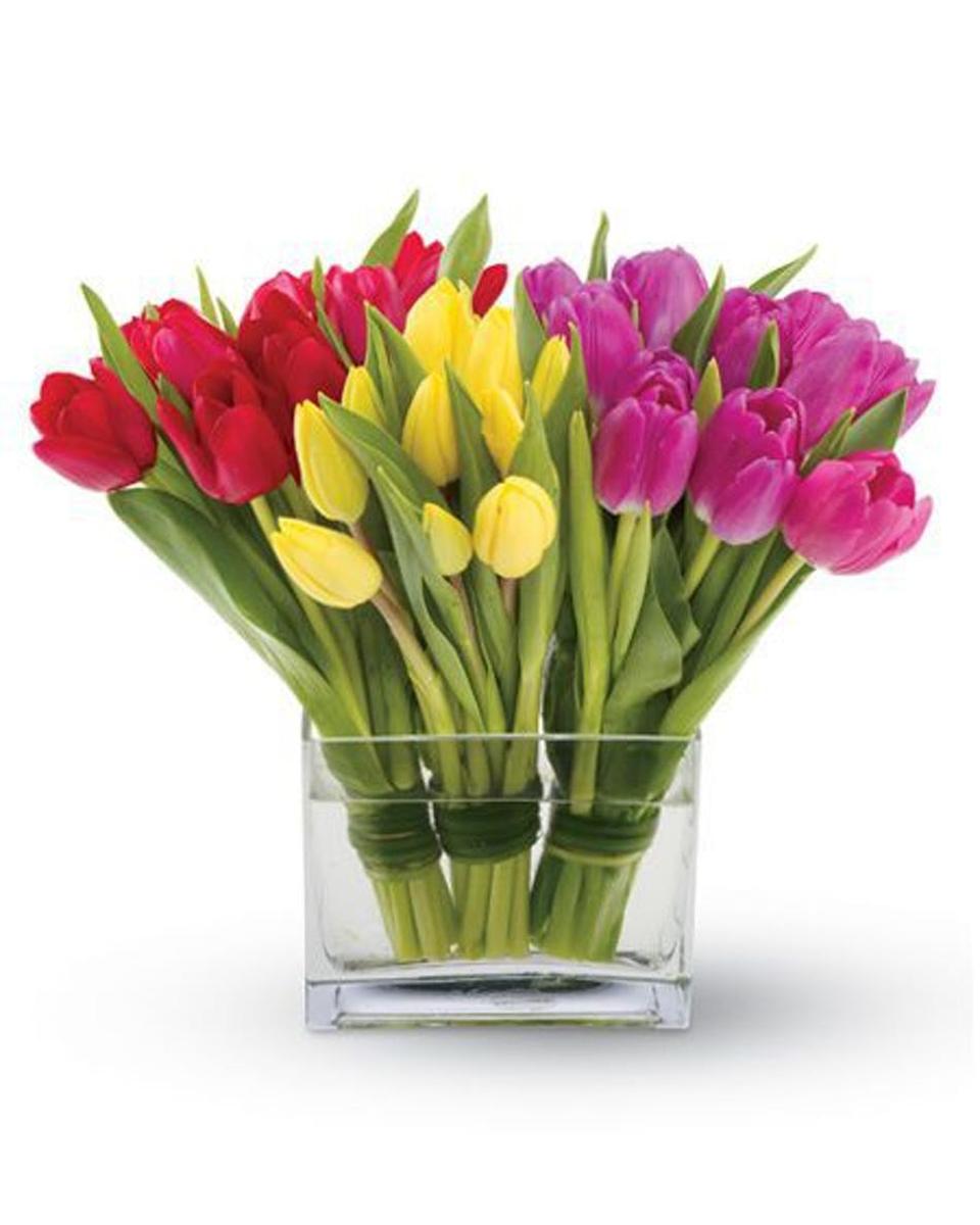 Standard (30 Tulips)