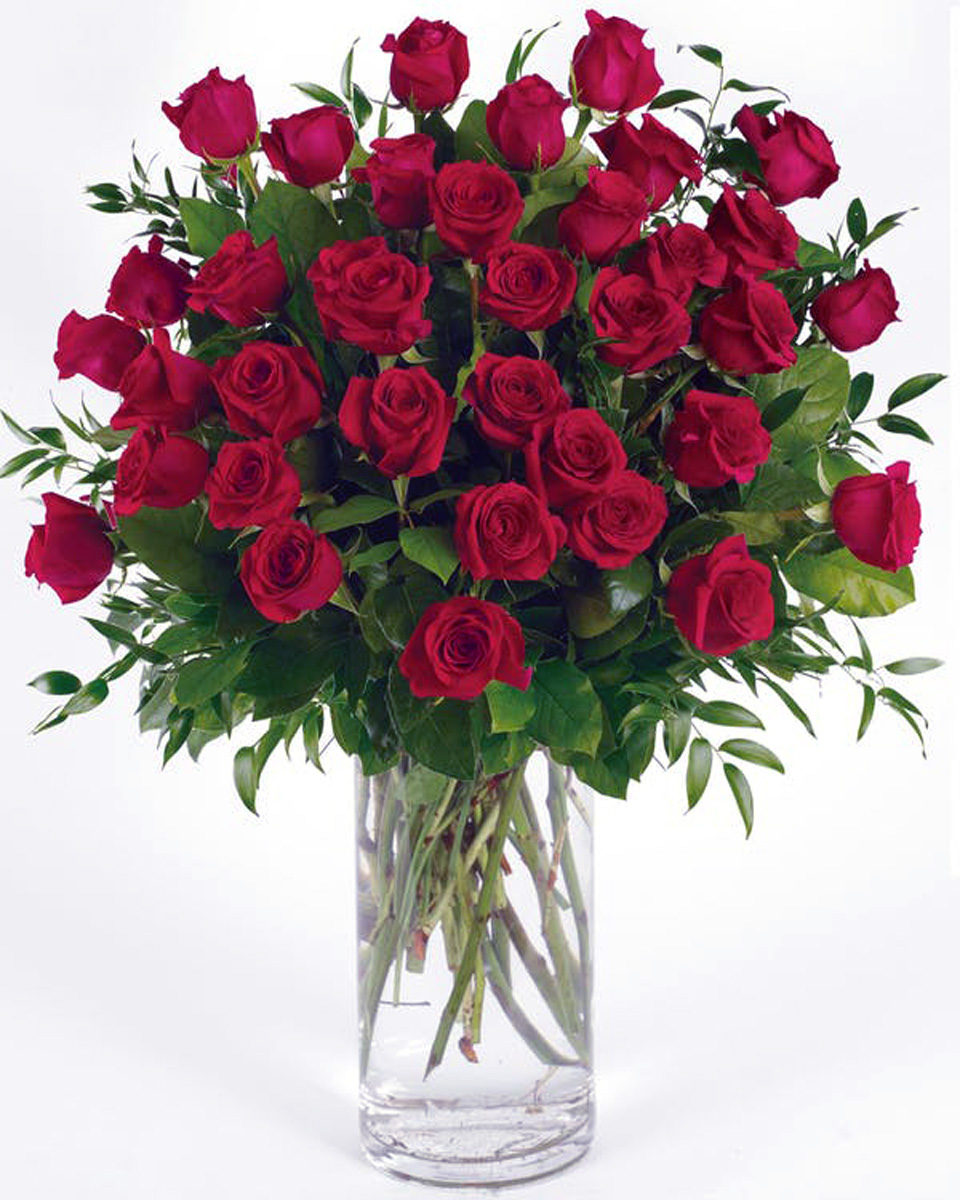 36 Red Roses-Standard