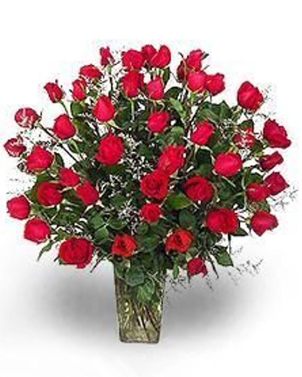 48 Red Roses-Double