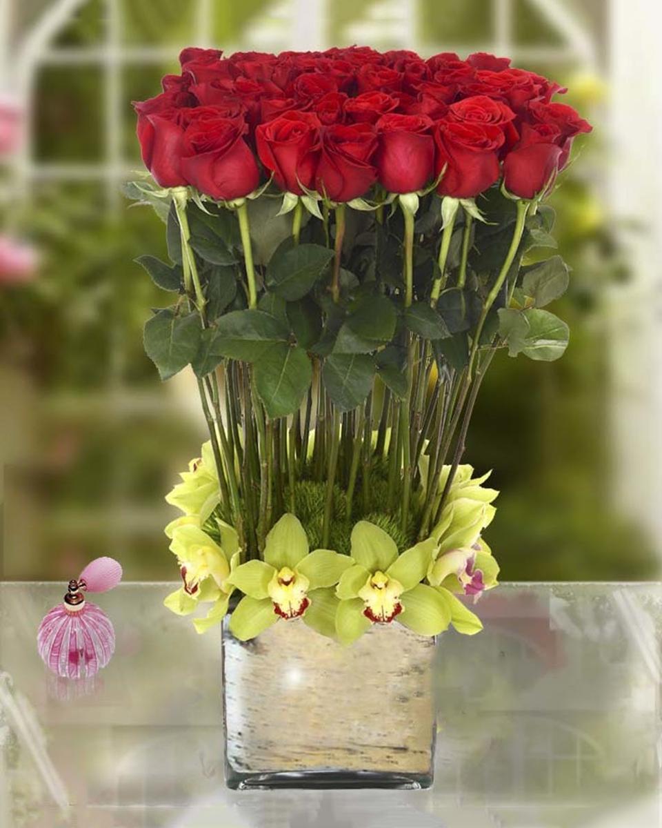 Rose Horizon-Standard (48 Roses)