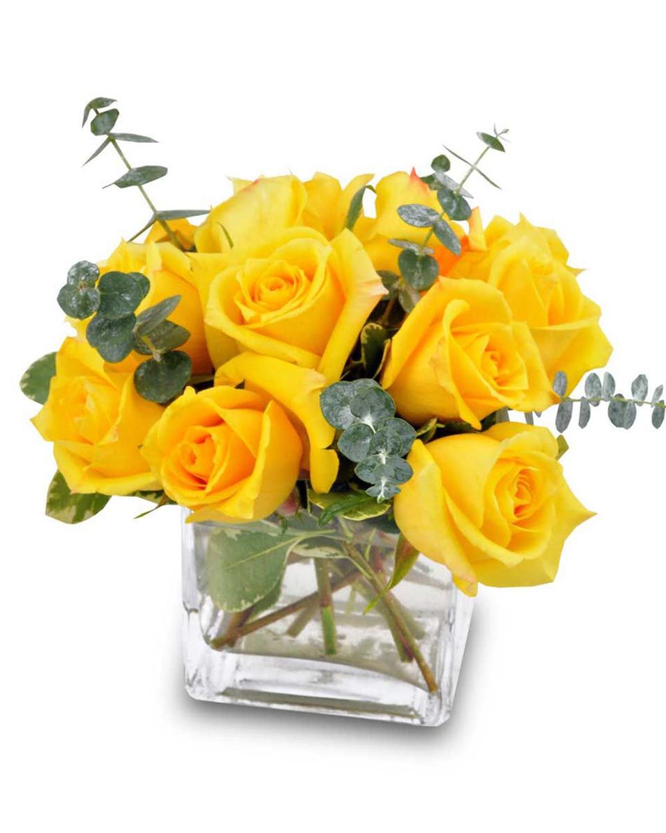 Rose Harvest-Standard (12 Roses)