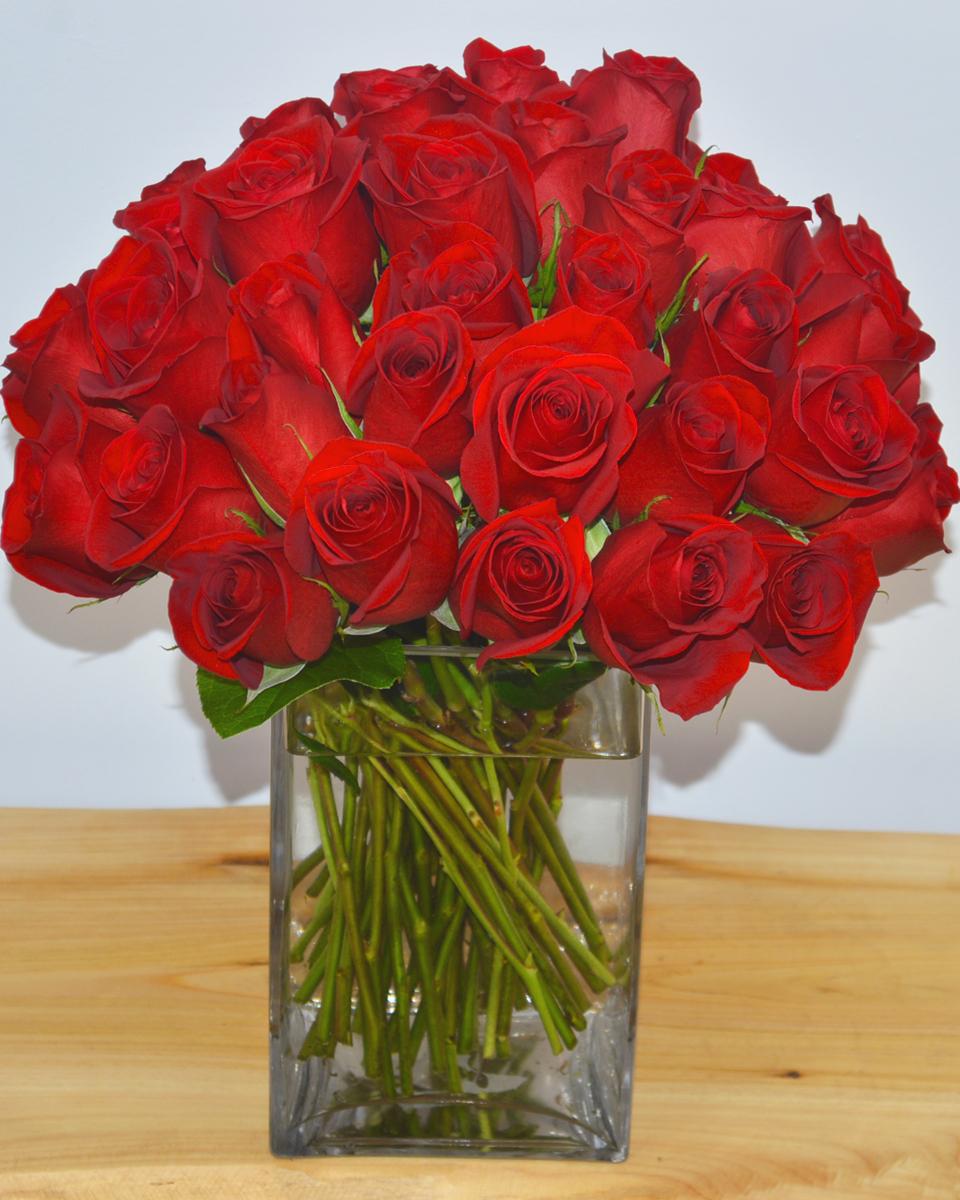50 Rose Cluster