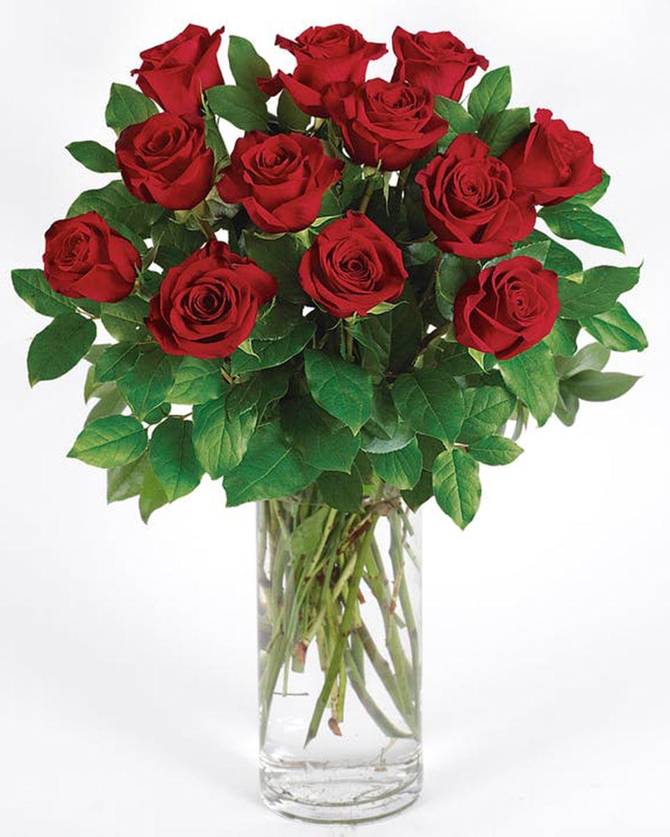 12 Long Stem Red Roses arranged in a Vase