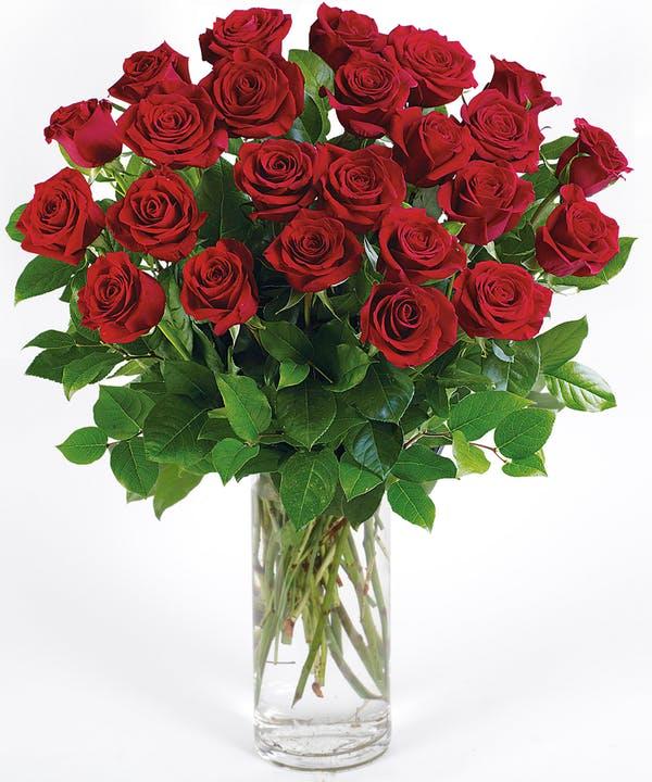 24 Long Stem Red Roses arranged in a Vase