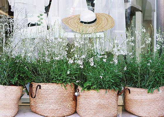 Basket Gardens