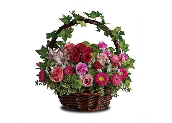 Sympathy Baskets