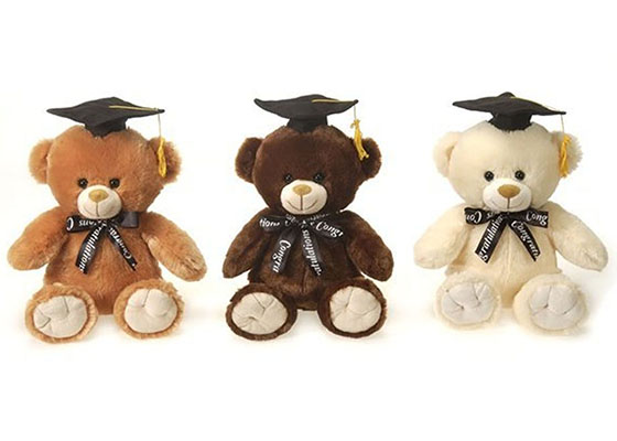 Graduation Teddy Bears