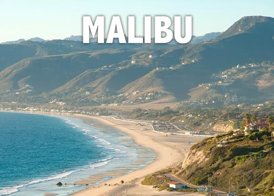 Malibu Flower Shop
