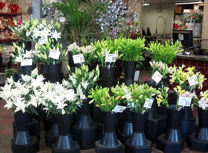 White Lilies Store
