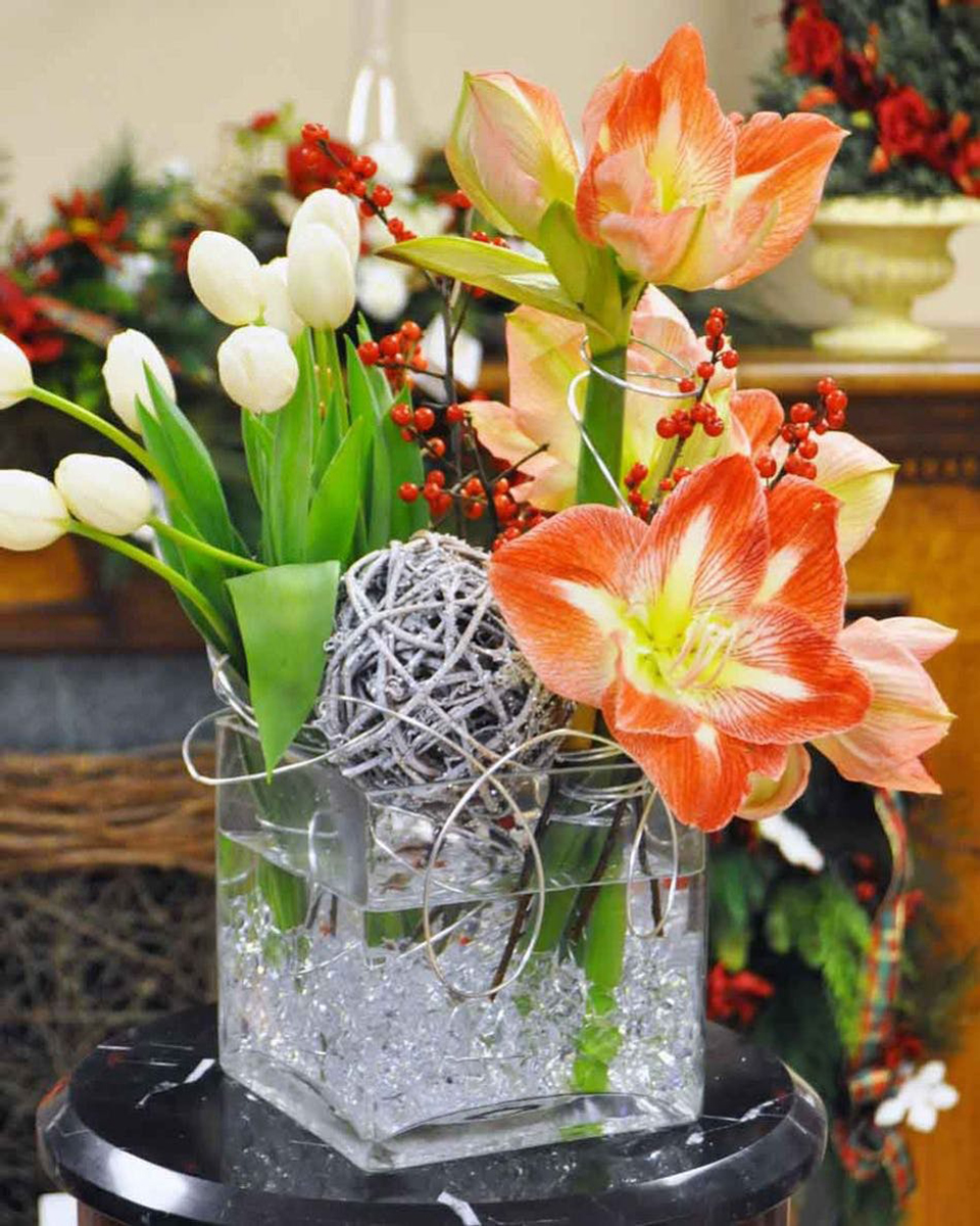 Amaryllis & Tulips-Standard (6 in Bubble Bowl)
