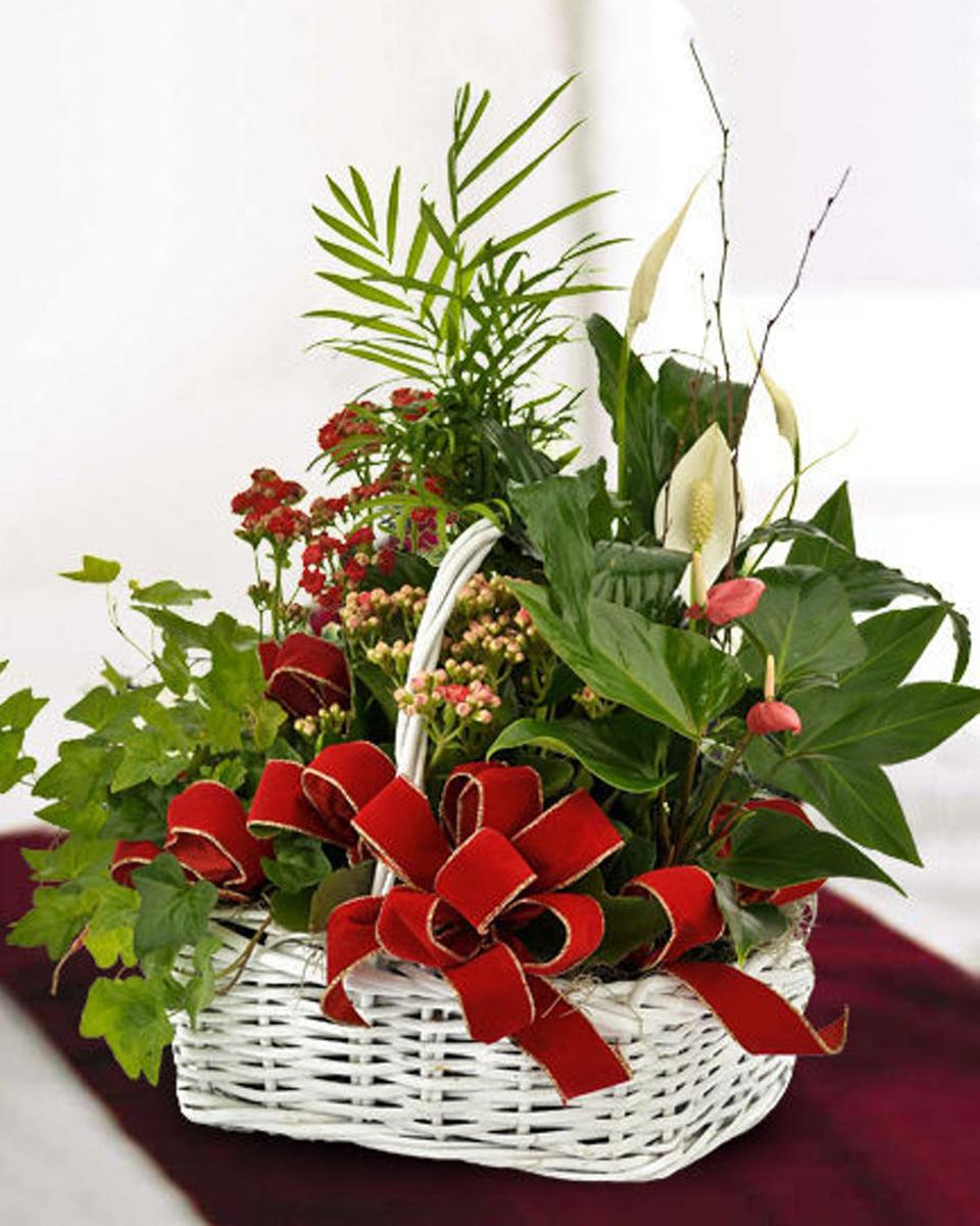 Holiday Basket Garden-Standard