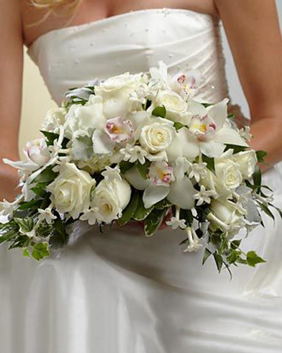 Bridal White-Standard