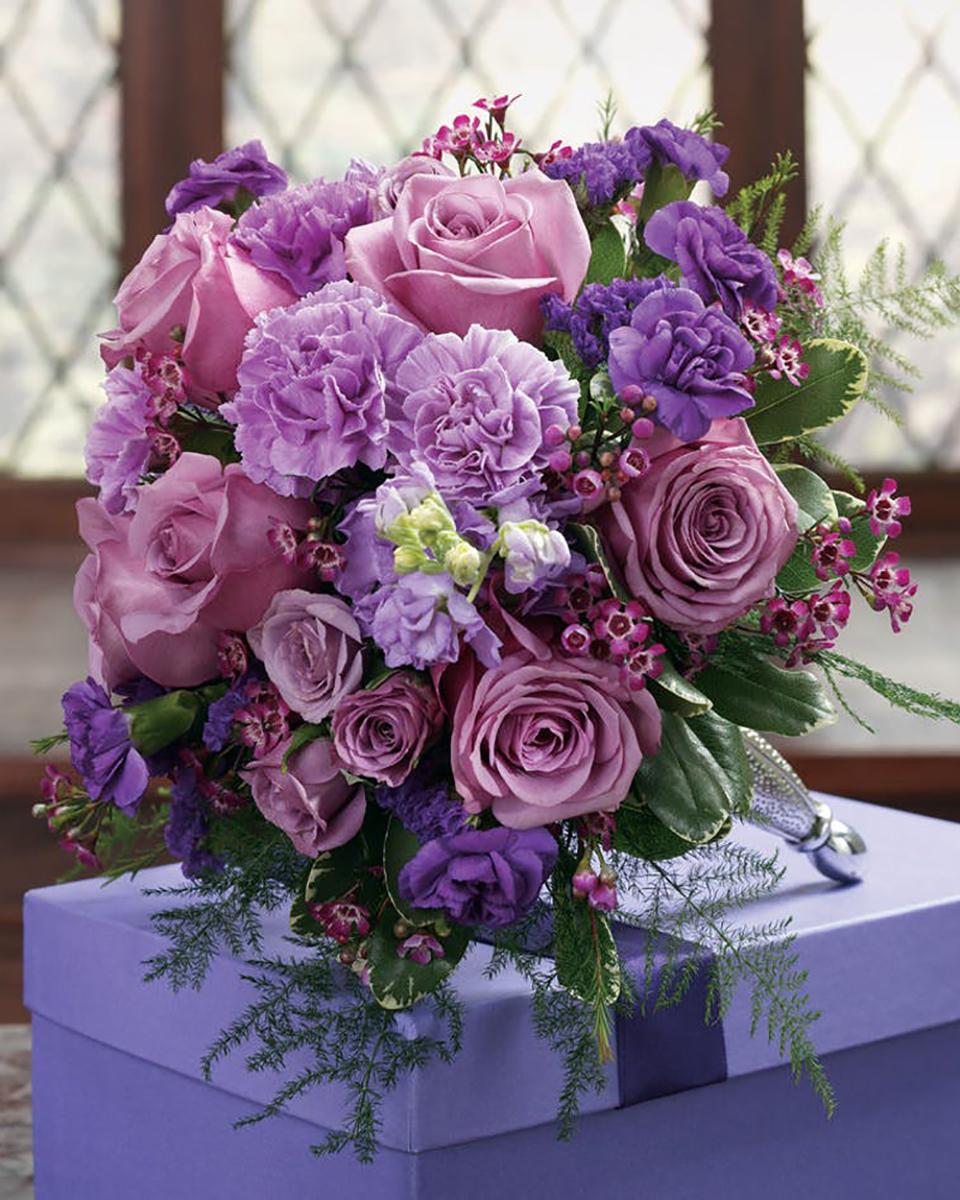Purple Perfect-Standard