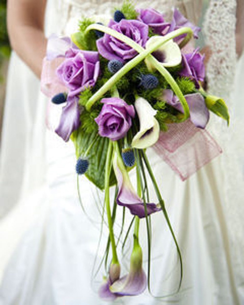 Purple Perfection-Standard