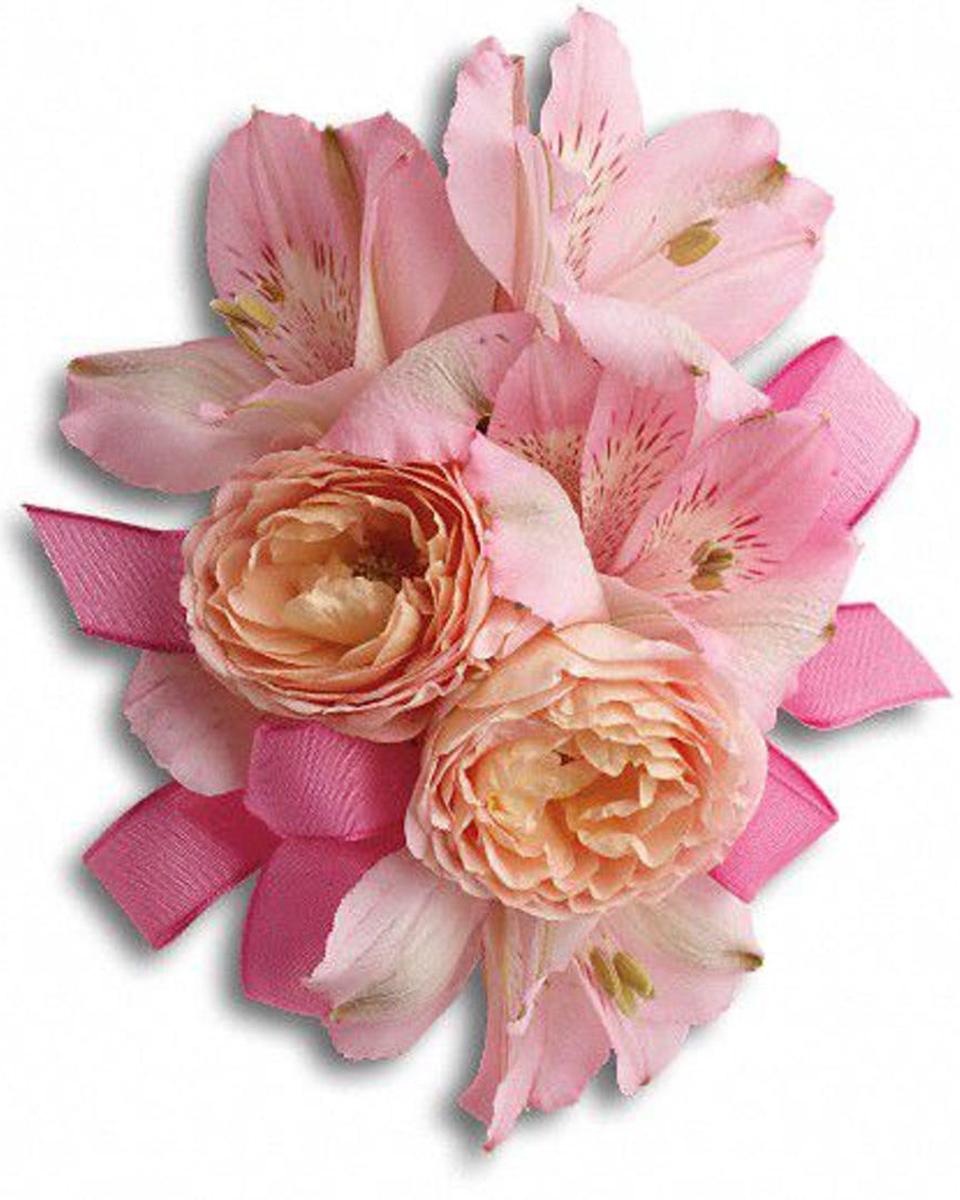 Alsroe & Roses-Standard