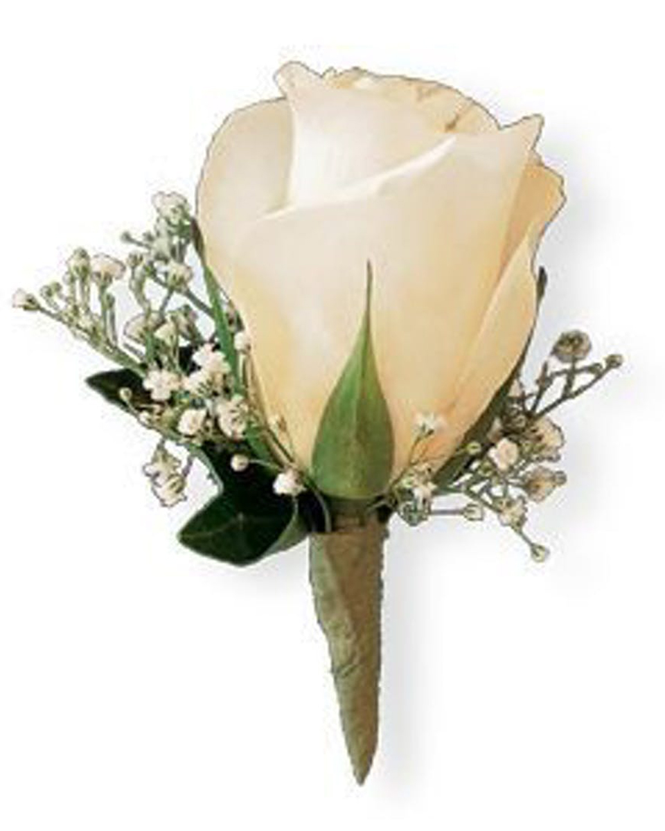 White Rose with Babys Breath Bout-Standard