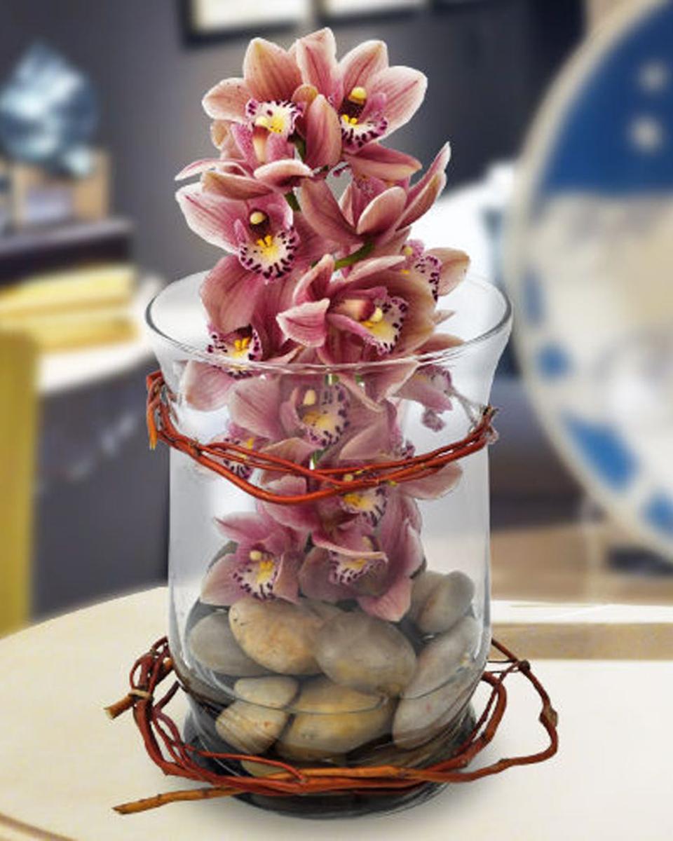 Rocking Orchids-Standard