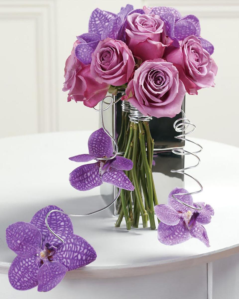 Power of Purple-Standard