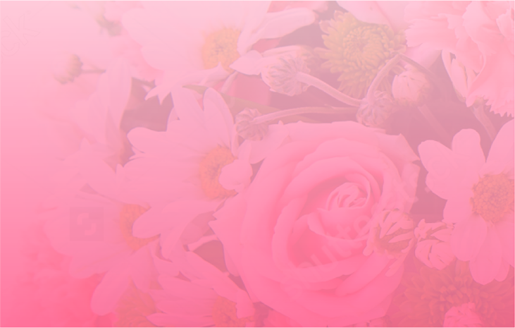 Chrysanthemums are November's Flower